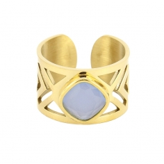 Anillo AAN270 ACL