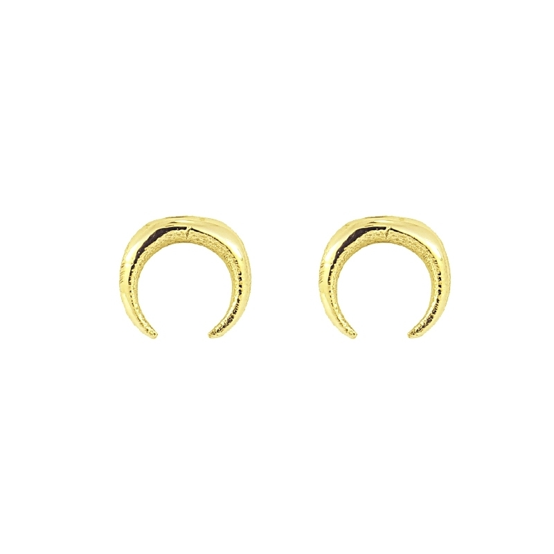 - Moon earrings - APE815 D